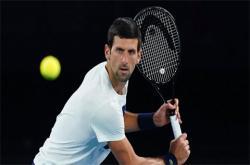 Vô địch Australian Open 2020: Nhà cái chọn Djokovic, Nadal hay một ai khác?